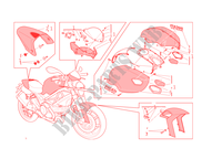 ART KIT für Ducati Monster 1100 EVO 2013